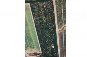 New Jersey Corn Maze