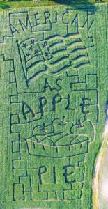American Flag Patriotic Corn Maze